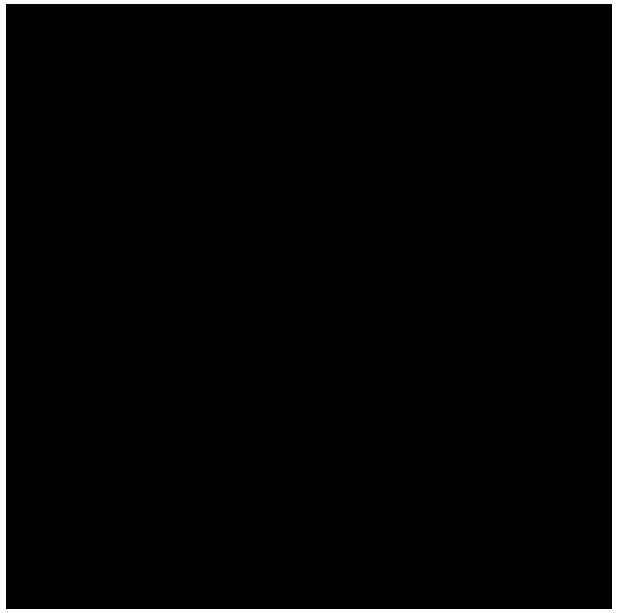 IBONUS